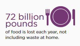 Taking a Bite Out of Food Waste
